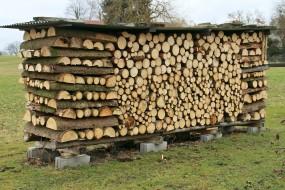 Wie wird Brennholz richtig gelagert?
