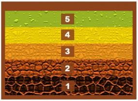 Vorteile und Befüllung von Hochbeete